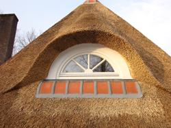 Dakkapel voor rieten dak_P110