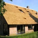 Rieten dak - Boerderij Putten achterzijde