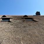Rieten dak - Boerderij Putten dakramen