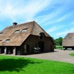 Rieten dak - Boerderij Putten onderhoud