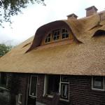 Rieten dak - Boerderij Putten zijkant