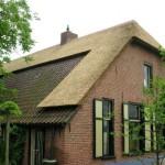 Rieten dak - Boerderij Woudenberg zijkant