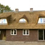 Rieten dak - Villa Ermelo
