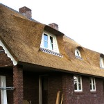 Rieten dak - Villa Ermelo zijkant