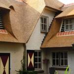 Rieten dak - Villa Putten