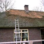 Rieten dak - onderhoud - woonhuis Putten fase 1