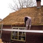 Rieten dak - onderhoud - woonhuis Putten fase 3