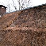 Rieten dak - onderhoud - woonhuis Putten fase 4