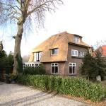 Rieten dak - villa Nieuwegein